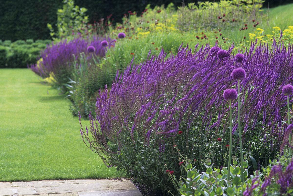 Floral garden at Grendon Court