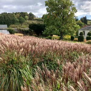 Grendon Court Gardens Herefordshire
